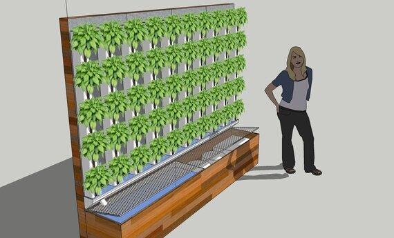 Vertical Aquaponics Design Hydroponic Technique Plans