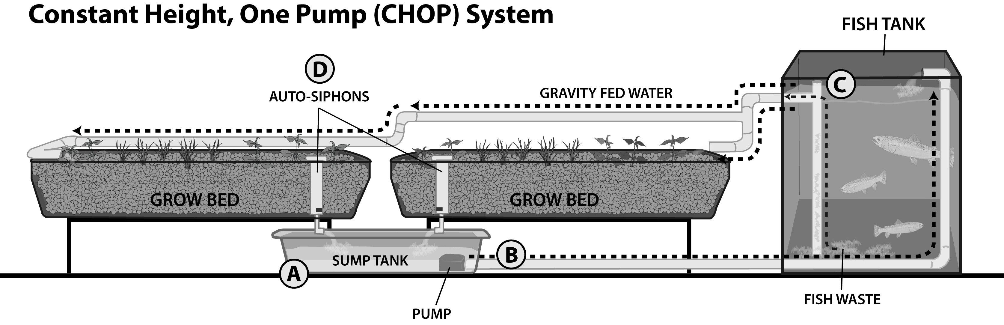 Chop aquaponics diagram chop free engine image for user for Hydroponic raft system design