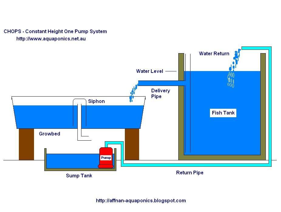 Uncategorized Aquaponics How To