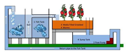 Aquaponics Chop System