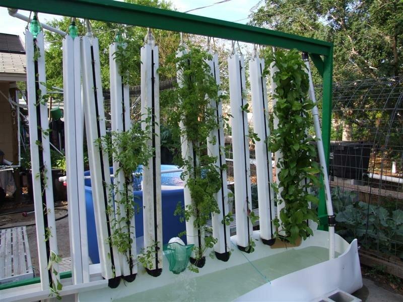 Diy vertical aquaponics for Vertical planting system