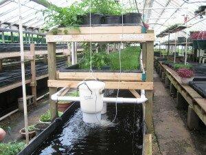 Growing Power Aquaponics Design