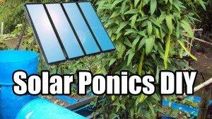 Solar Power Aquaponics