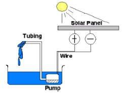 Solar Powered Aquaponics System